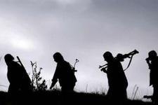 Öldürülen PKK'lı terörist okul müdürü çıktı