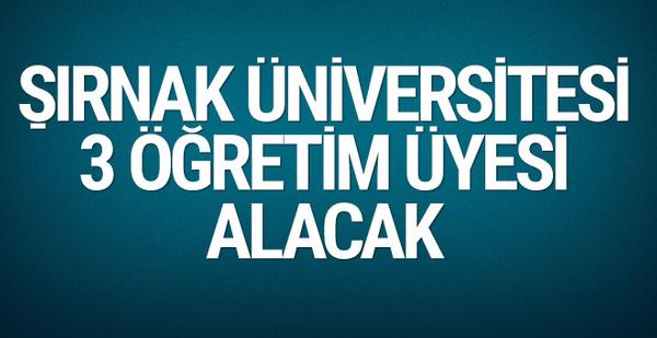 Şırnak Üniversitesi 3 akademik personel alacağını duyurdu