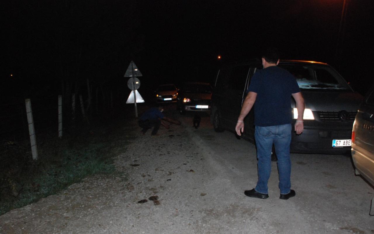 Yol kenarına köpekleri bırakan belediye tespit edildi