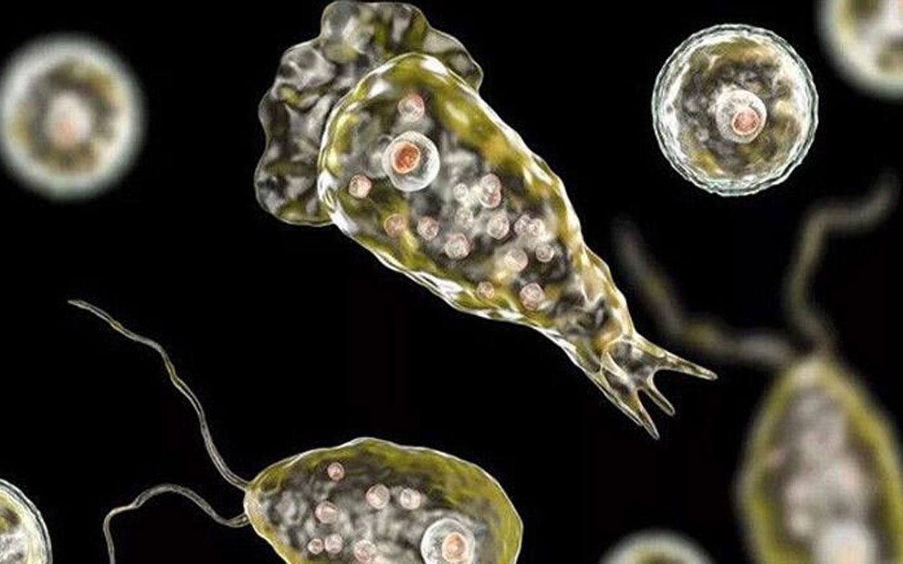 Beyin yiyen bakteri kabusu! İki küçük çocuk hayatını kaybetti
