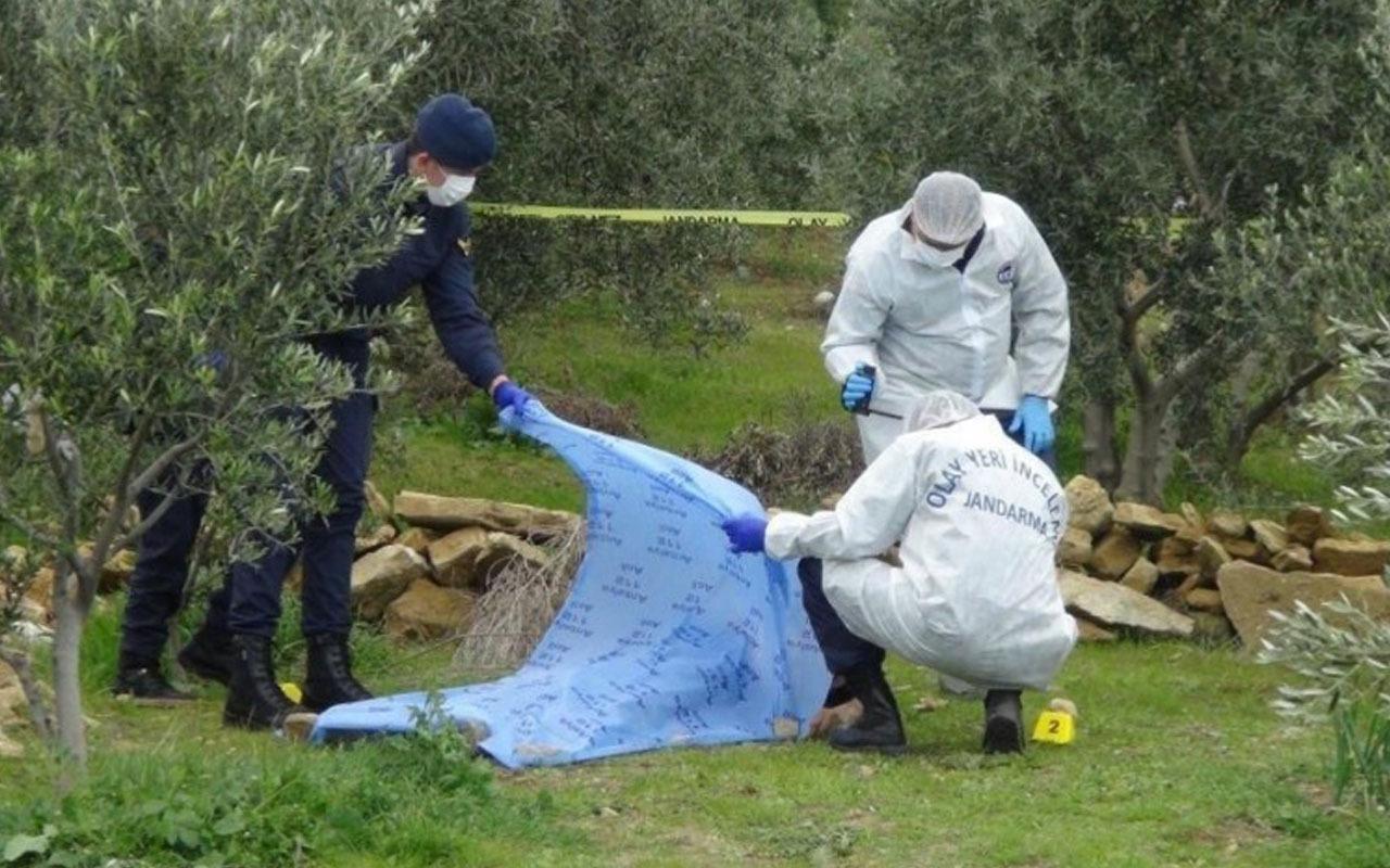 Zeytin ağacı yüzünden kardeşini öldürdü! Bakın katil abi ne ceza aldı